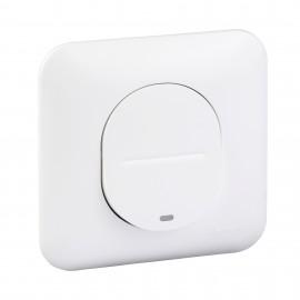 Interrupteur simple à témoin lumineux avec plaque - Ovalis - Schneider - S260263
