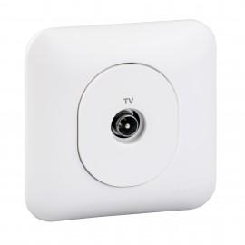 Prise TV avec plaque - Ovalis - Schneider - S260405